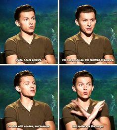 I so agree tom but I don't like snakes too