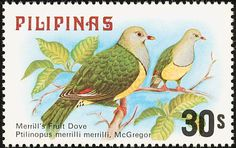 Philippines Stamp 1982 - Birds Cream bellied fruit dove
