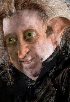 "Can You Guess Which ""Harry Potter"" Characters Are Morphed Together? <<< Peter and Dobby are freaky!!!"