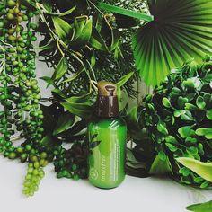 The Green Tea Seed Serum Giá: 450k The Green Tea Seed Serum là sản phẩm tinh chất dưỡng da có chiết xuất chính là trà xanh với công dụng nổi bật trong việc cấp nước dưỡng ẩm dành cho những bạn có làn da khô thiếu nước đồng thời cân bằng độ PH cho da se khít lỗ chân lông và ngăn ngừa lão hóa. Sản phẩm chứa 100% thành phần trà xanh thiên nhiên được thu hoặc trên hòn đảo Jeju trong đó hạt trà xanh với lượng dưỡng chất dồi dào giúp cung cấp độ ẩm giữ lượng nước và dầu trên da luôn được cân bằng…