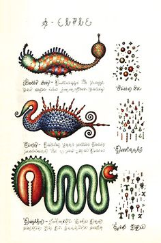 Codex Seraphinianus: History's Most Bizarre and Beautiful Encyclopedia,