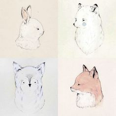 Animal drawings / Sarah McNeil.... oh my goodness. i have died and gone to heaven.