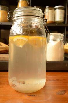 Le kéfir de fruit, la boisson à faire soi-même. La recette de base pour commencer avec ses grains de kéfir.