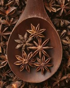 Find images and videos about brown, spices and star anise on We Heart It - the app to get lost in what you love. Brown Aesthetic, Spices And Herbs, Star Anise, Seed Pods, Brown Beige, Yule, My Favorite Color, Spice Things Up, Earthy
