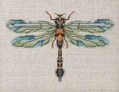 Dragonfly cross stitch