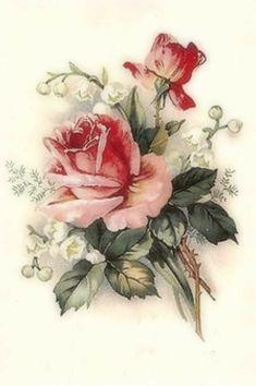 Vintage Stuff and Antique Designs Vintage Cards, Vintage Paper, Vintage Postcards, Vintage Images, Victorian Flowers, Vintage Flowers, Botanical Art, Botanical Illustration, Decoupage Vintage
