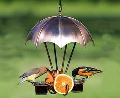 Woodlink Brushed Copper Oriole Bird Fruit /& Jelly Feeder
