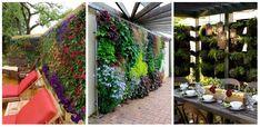 25 nagyszerű ötlet függőleges kert kialakításához