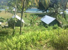 Cricket Pitch. Kwato Island.