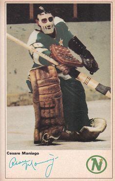 Hockey Goalie, Hockey Teams, Hockey Players, Minnesota North Stars, Minnesota Wild, Wild North, Goalie Mask, Masked Man, Pipes