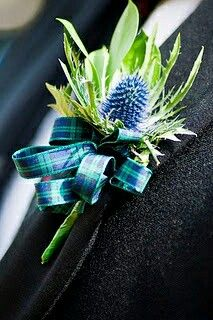 Boutonnieres, Thistle Boutonniere, Wedding Boutonniere, Thistle Bouquet, Scottish Wedding Themes, Scottish Weddings, Scottish Wedding Traditions, Wedding Bouquets, Wedding Flowers