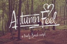 Hello! Presenting a hand drawn calligraphic script Autumn Feel. It's made with a dry brush and has a usefull extra set of various swashes and dynamic strokes (fourth screenshot). This extra items can be found in an additional font files Autumn Feel Extras or in included vector eps. Your affiliate link is: https://thehungryjpeg.com/product/25476-autumn-feel-font/titi/