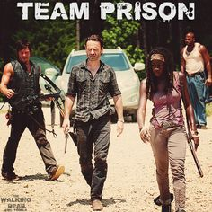 Michonne, Rick and Daryl (The Walking Dead)