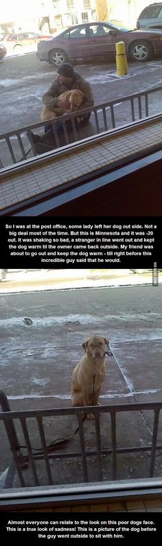 Most 'Incredible Human' award goes to this guy.  To the dogs owner, well, she should get a good slap.