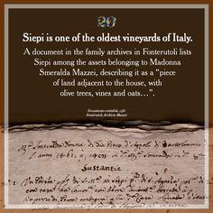 """Siepi è uno dei vigneti più antichi d'Italia. In un documento contabile del 1946, conservato nell'archivio di famiglia a Fonterutoli, Siepi è annoverato tra le proprietà di Madonna Smeralda Mazze e descritto come """"un pezzo di terra continua alla casa, olivata, vitata e querciata…"""". #Siepi20 @marchesimazzei #mazzei #fonterutoli  #tuscany #wine"""