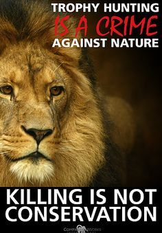 Worldwide Anti-Trophy Hunting Rally by CompassionWorks International THIS SATURDAY 2/6/16 - Click to find out where you can join the demonstration.
