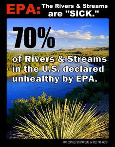 70% of Rivers & Streams in the U.S. declared unhealthy by EPA. | Wake up you dirty bechez. A lifestyle & beauty routine that hurts the planet, hurts you. It's very simple. A lifestyle & beauty routine that heals the planet, heals you. You're not different. You are not separate. You need to start acting like it. Fuck the magazines & advertising leeching notions & desires into your mind. Rituals that cause harm are not beautiful. Return to natural living & natural beauty. | #paradigmshift