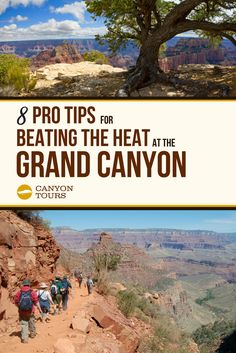 Summer is coming! Beat the heat at the this summer with 8 expert tips from pro travelers. Visiting The Grand Canyon, Pro Tip, Beat The Heat, Summer Is Coming, Summer Heat, Beats, Tours, Vacation, Travel