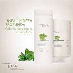 Plant limpieza profunda