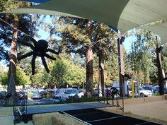 Giant balloon spider!  www.partyfiestadecor.com