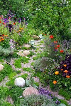TULIPES ABRICOT A PLANTER DANS LE COIN DES MYOSOTIS ET DES CLEMATITES A L'AUTOMNE HOME & GARDEN: 40 inspirations pour un jardin anglais