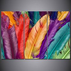 Colorful Bird Feather 3 pcs HD Modern Art Poster Wall Home Decor Canvas Print Poster Pictures, Canvas Pictures, Print Pictures, Coloured Feathers, Colorful Feathers, Poster Wall, Poster Prints, Posters, Feather Painting