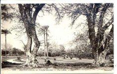 حديقة النزهة، الإسكندرية