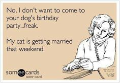 No I don't want to come to your dog's birthday