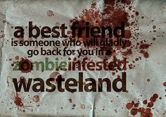 Thank God, my BFF knows that if you aren't fast enough to keep up then you are just Zombie bait! True Friends, Best Friends, Friends Forever, Zombie Quotes, Zombie Plan, Zombie Apocolypse, Zombie Attack, Walking Dead Zombies, Make Me Smile