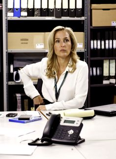 The Fall TV Series Stella Gibson, (played by gillian anderson)