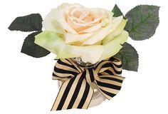 Open Rose in Glass Neck Bubble, Apricot on OneKingsLane.com