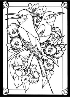 Bird Stained Glass Coloring page 3: Rainbow Bee Eater male (left), female (right)