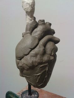 anatomical heart clay sculpture