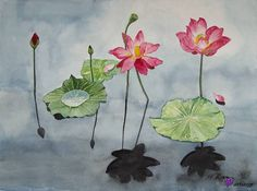 Seerosen by Haeran Kim; Watercolor painting of water lilies on paper, Watercolour Painting, Painting Art, Water Lilies, Lily, Paper, Nature, Artist, Flowers, Collection