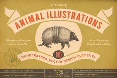 100 Vintage Animal Illustrations by The Beacon Collection on Creative Market
