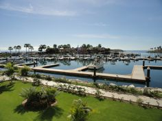 Puerto Los Cabos And The Quest For The Best