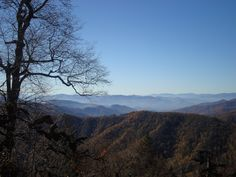 View from Sweat Heifer Trail, off the AT in the Smoky Mountains.