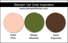Stampin' Up! Color Inspiration - Petal Pink, Mossy Meadow, Early Espresso