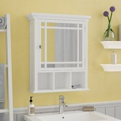 Beautiful Taryn 20 x 24 Surface Mount Framed 1 Door Medicine Cabinet with 1 Adjustable Shelf by Andover Mills top rated furniture sale from top store Surface Mount Medicine Cabinet, Recessed Medicine Cabinet, Bathroom Medicine Cabinet, Medicine Cabinets, Bathroom Vanity Base, Vanity Set With Mirror, Small Bathroom, Bathroom Ideas, Bathrooms