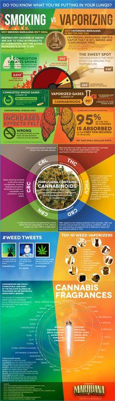 Isn't It High Time We Legalize Marijuana? - Forbes