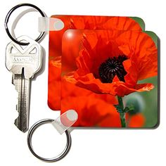 Yves Creations Florals and Bouquets - Beautiful Red Poppy... http://www.amazon.com/dp/B005K2BRUU/ref=cm_sw_r_pi_dp_BRpsxb00WZK6H