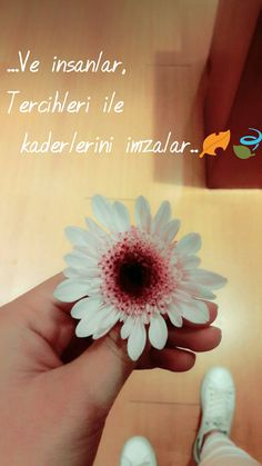 Hair Diffuser, Insta Story, Cool Words, Diy And Crafts, Islam, Wallpaper, Quotes, Instagram, Places