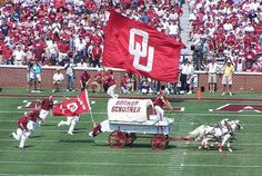 Football season is upon us! Oklahoma University Football, Football Love, Football Baby, Football Season, Football Team, Ou Game, College Fun, College Tips