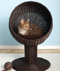 Give your cat a comfy perch with this Kitty Ball Bed. Cats are naturally inclined to elevate, which is why this nest is perfect for your feline friend: it's off the ground but still easy to reach for older pets. And the clean lines will artfully complement your decor