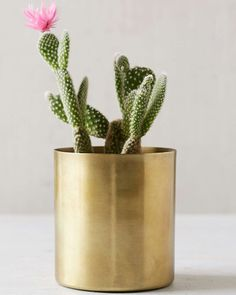 14. Mod Metal Planter #holiday #gifts #presents