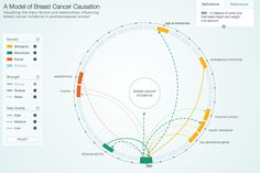 A Model of Breast Cancer Causation