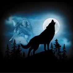 Wolf Silhouette – Harlequin Nature Graphics Ltd.