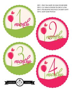 Monthly Baby Milestone Stickers  Spring time by CelebrateSimply, $5.00