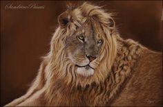 lion,pastel sec