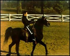 Elvis at Graceland.     Yes I would say this is an amazing scene.       Ride 'em Cowboy !